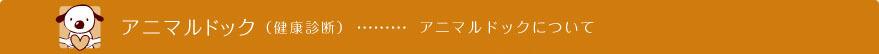 24504_ext_01_0.jpg