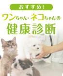 banner_medical.png