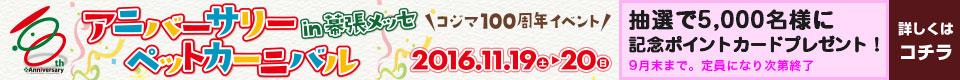 mainvisual 960*80
