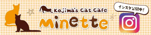 コジマのネコカフェミネット